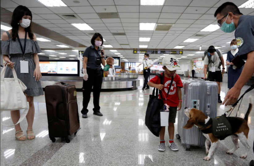 Taiwanese airport offers fake flights for travel-starved tourists