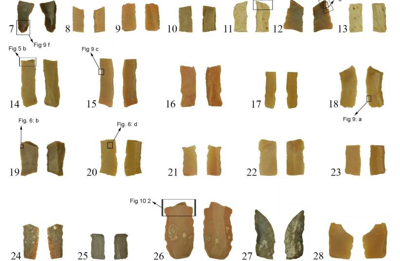 Geometric and gon-geometric microliths from Neve David. (photo credit: ZINMAN INSTITUTE OF ARCHAEOLOGY/UNIVERSITY OF HAIFA)