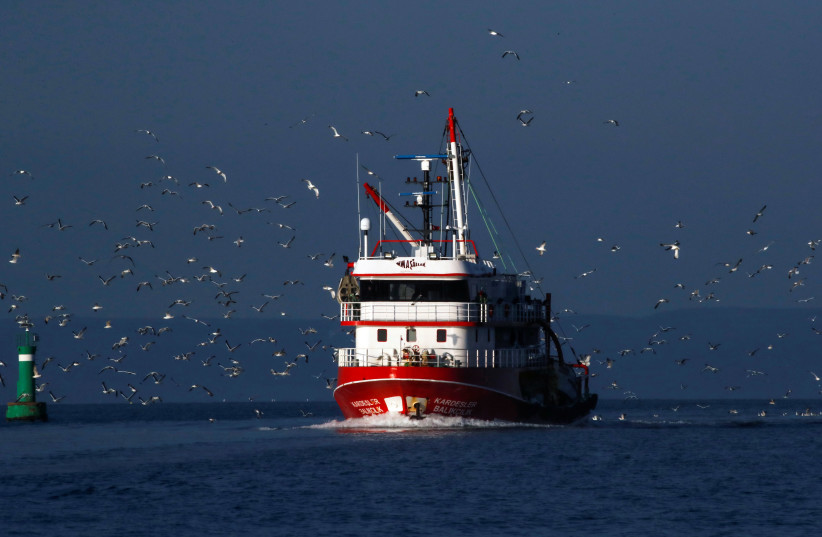 Coronavirus outbreak on fishing boat suggests antibodies safeguard people