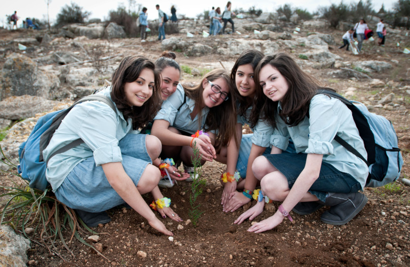 "Young Jewish children plant trees as they participate in an event organized by the Keren Kayemet LeIsrael, for the upcoming Jewish holiday of Tu Bishvat in the Ben Shemen forest on February 06, 2012. Tu Bishvat is a Jewish holiday occurring in late winter/early spring marking the ""New Year for Trees (photo credit: OMER MIRON/FLASH90)"
