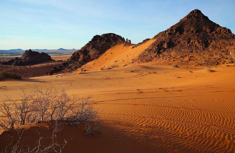 The Nefud desert in the northern part of the Arabian Peninsula (photo credit: CHARLES T.G. CLARKE / WIKIMEDIA COMMONS)