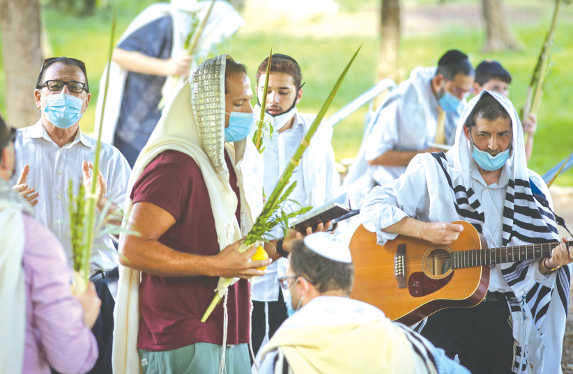 WORSHIPERS hold the Four Species – 'lulav', 'etrog', 'hadassim' and 'aravot' – as they pray during Sukkot, in Ramat Beit Shemesh earlier this week.  (credit: YAAKOV LEDERMAN)