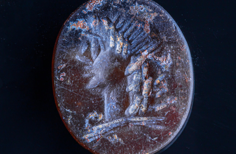 Seal with the image of Apollo. (photo credit: ELIYAHU YANAI/CITY OF DAVID)