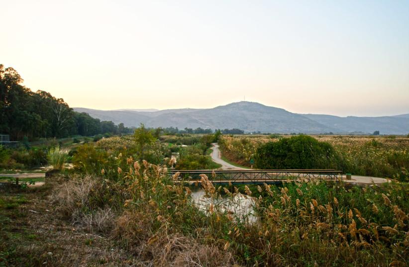Hula Nature Reserve (photo credit: HADAR YAHAV)
