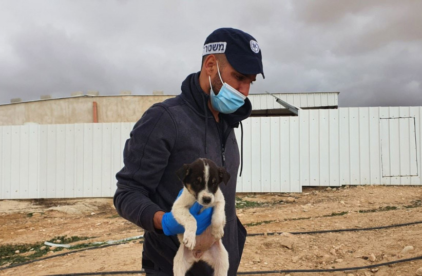 A police officer recovers a puppy that was abused by residents of Kuseifa in southern Israel, Monday, January 18, 2020. (photo credit: POLICE SPOKESPERSON'S UNIT)
