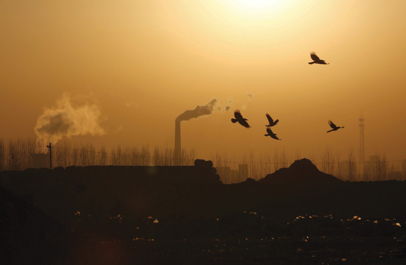BIRDS FLY near factory emissions n Tangshan, China, in 2016. Waskow emphasizes the importance of using religion to fight climate change (photo credit: KIM KYUNG-HOON/FILE PHOTO/ REUTERS)