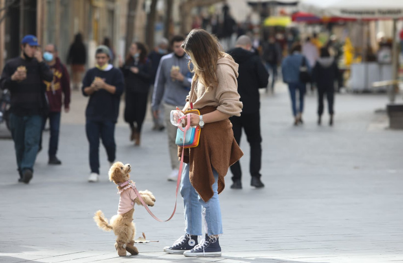 A woman and her dog are seen on Jaffa Street in Jerusalem after the coronavirus lockdown ends, on February 8, 2021. (photo credit: MARC ISRAEL SELLEM/THE JERUSALEM POST)