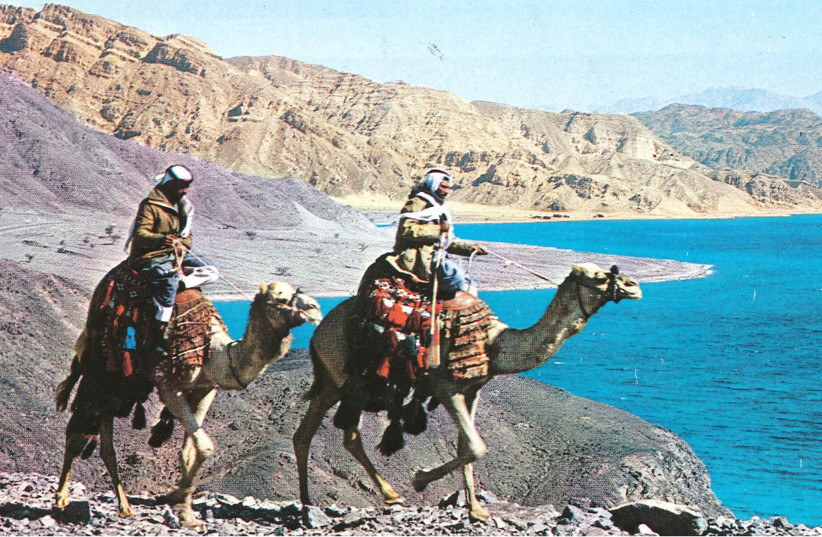 Bedouin riders at the Gulf of Eilat (photo credit: DR. CLINTON BAILEY)