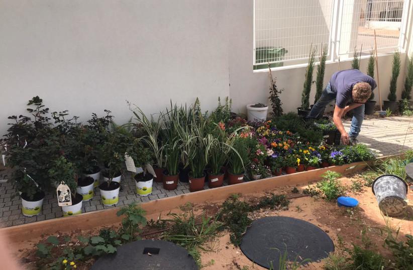 Gardening by Ebay Israel employees on Good Deeds Day (photo credit: YEHOSHUA LEIB)