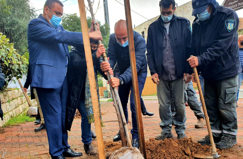 Jerusalem Mayor Moshe Lion attends a trial run for a mass tree planting project across the streets of the city. (photo credit: JERUSALEM MUNICIPALITY)