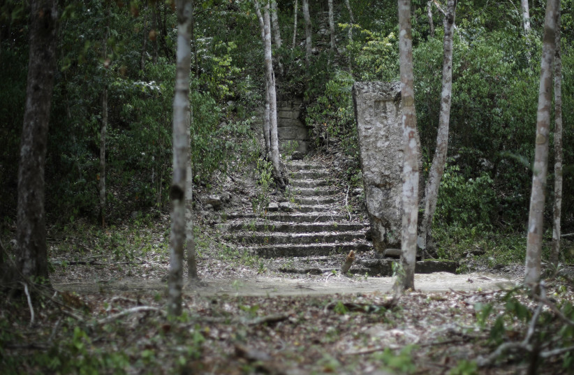 "One of the most important cities of Mayan civilization, Calakmul, has been named by UNESCO as Mexico's first ""mixed natural and cultural"" World Heritage Site.  (photo credit: REUTERS)"