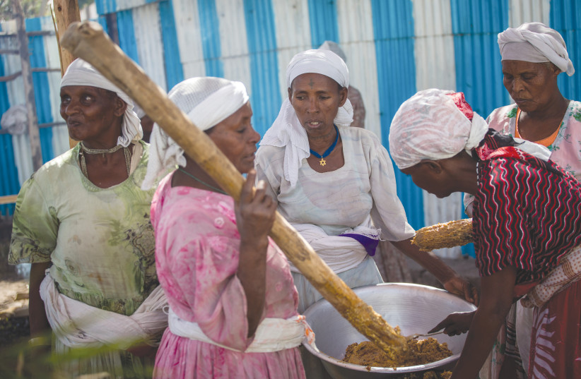 MEMBERS OF the Falash Mura Jewish Ethiopian community prepare food for the Passover Seder at the synagogue in Gonder, in 2016. (photo credit: MIRIAM ALSTER/FLASH90)