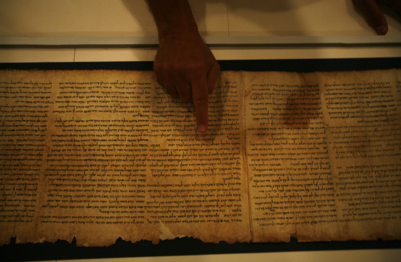 Adolfo Roitman, curator of the Dead Sea Scrolls, points at the original Isaiah Scroll, one of the Dead Sea Scrolls, inside a secured climate-controlled room in the Shrine of the Book at the Israel Museum in Jerusalem September 26, 2011. (photo credit: BAZ RATNER/REUTERS)