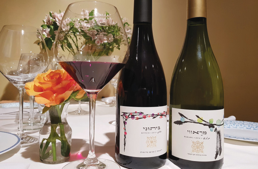 RECANATI WINERY'S Marawi and Bittuni, the first wines produced by an Israeli winery from these varieties. (photographer: Eli Prachter)