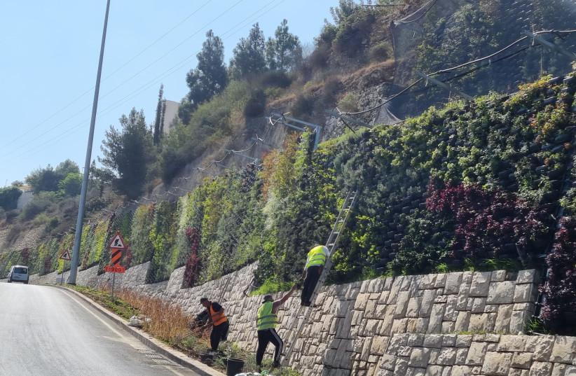 Jerusalem Municipality workers on the Green Wall near Jerusalem. (credit: JERUSALEM MUNICIPALITY)