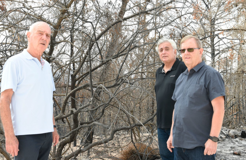 Maj. Gen. Matan Vilnai (L), president of the Israel Nature and Heritage Foundation at the site of Jerusalem's trees that were damaged by this summer's wildfires. (credit: Courtesy)