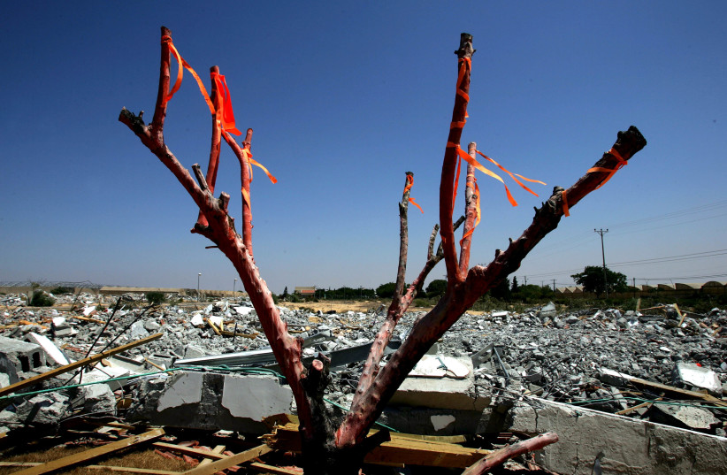 Tree is decorated with orange ribbons in front of destroyed Jewish settler houses in former Jewish settlement of Gadid in Gaza Strip, August, 2005. (photo credit: GORAN TOMASEVIC/REUTERS)