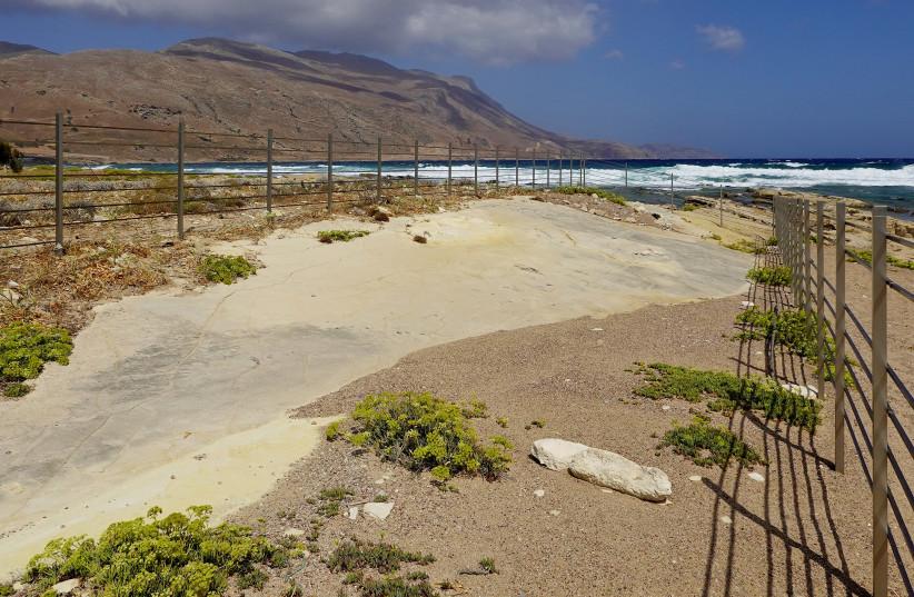Oldest known prehistoric footprints found in Crete