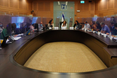 Knesset coronavirus committee meets to discuss ongoing regulations in Israel, July 19, 2020