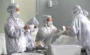 Employees work on a production line manufacturing face masks at a factory, as the country is hit by an outbreak of the novel coronavirus, in Fuzhou, Fujian province, China February 15, 2020