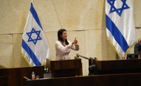 MK Shirley Pinto delivering her opening speech in sign language for the first time in the history of the Knesset.