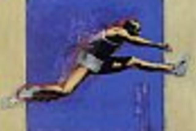 hurdle running 88 (photo credit:)