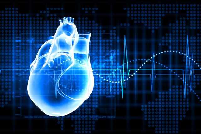 Virtual image of human heart  (photo credit: ING IMAGE/ASAP)