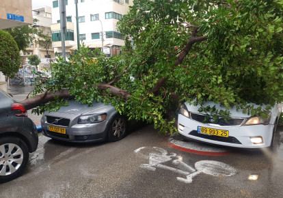 A fallen tree rests on two cars in Tel Aviv's Ben-Yehuda Street Friday. (photo credit: POLICE SPOKESPERSON'S UNIT)