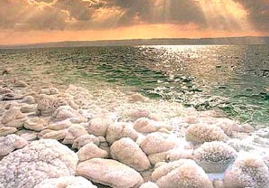 dead sea 298