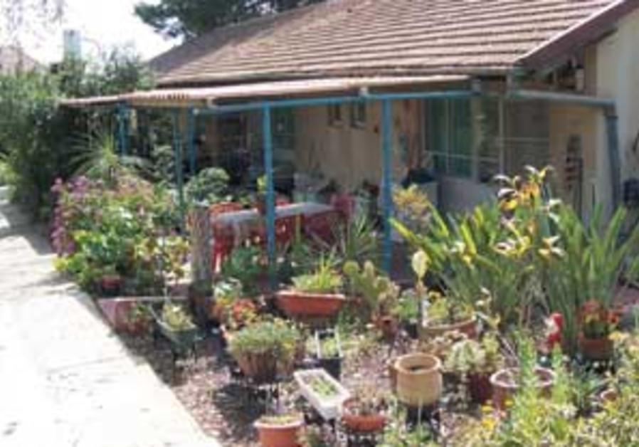 kibbutz galon 298