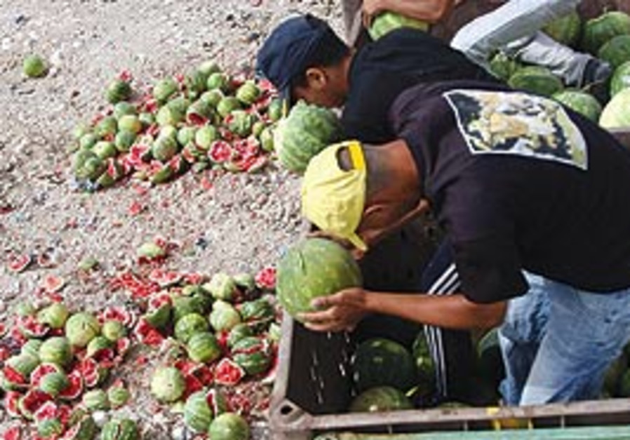 PA destroys produce from the settlements