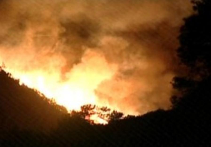 Fire burns at night on Carmel near Haifa