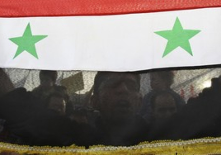 A Syrian protester holds the national flag.