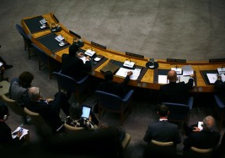 United Nations Security Council [file]