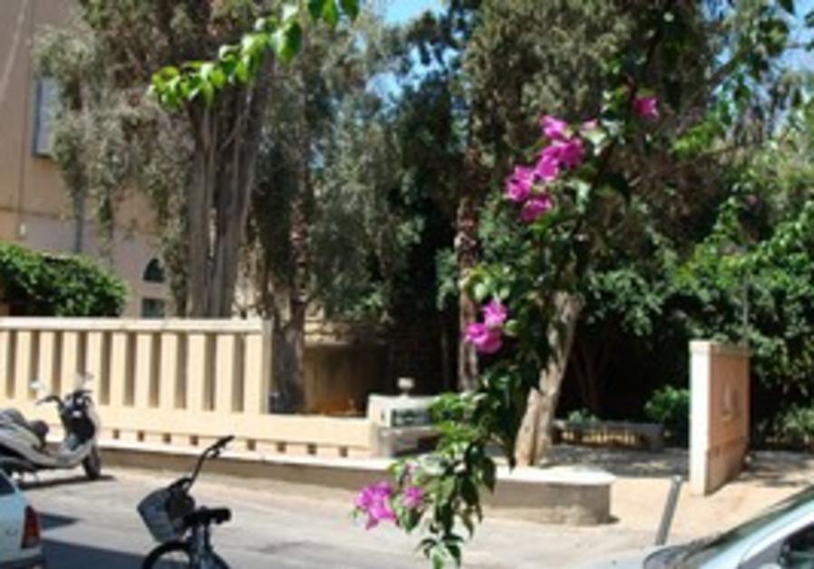 Jaffa real estate