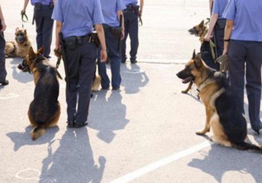 police search [illustrative]