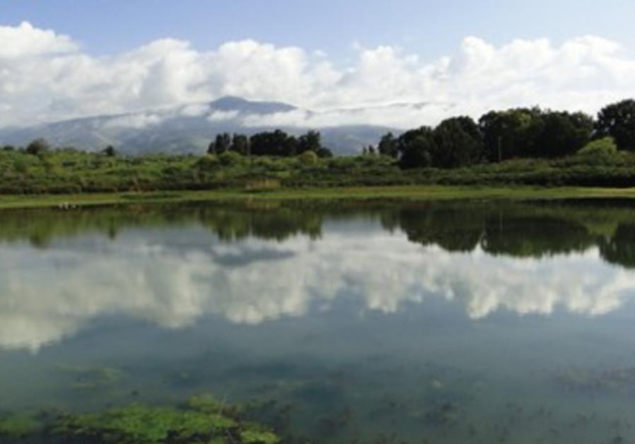 Tapline reservoir at Snir Nature Park