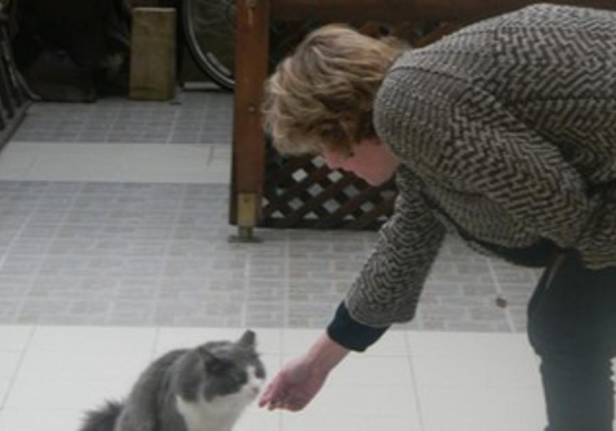Ilene Lubin bends down to pet a cat