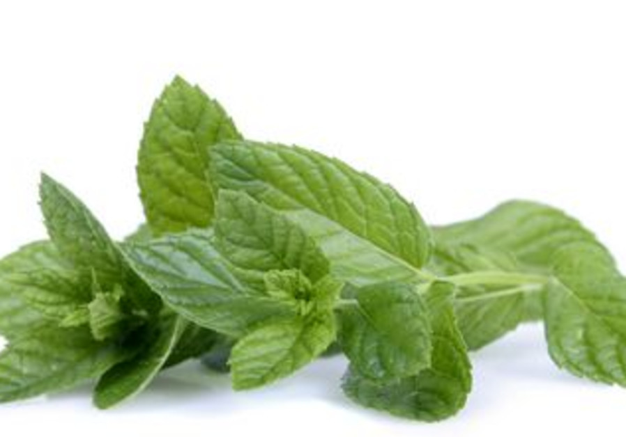 Mint can soothe upset stomachs or acid reflux.