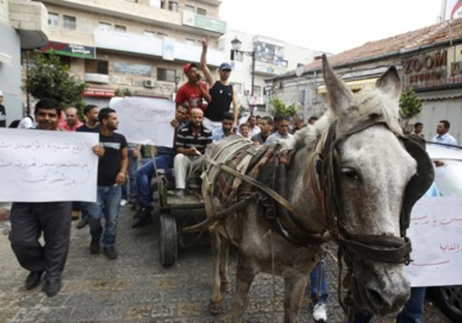 Palestinians ride mule cart in Ramallah protest
