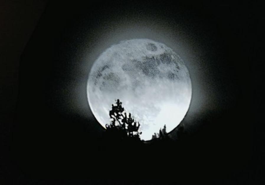 moon 521
