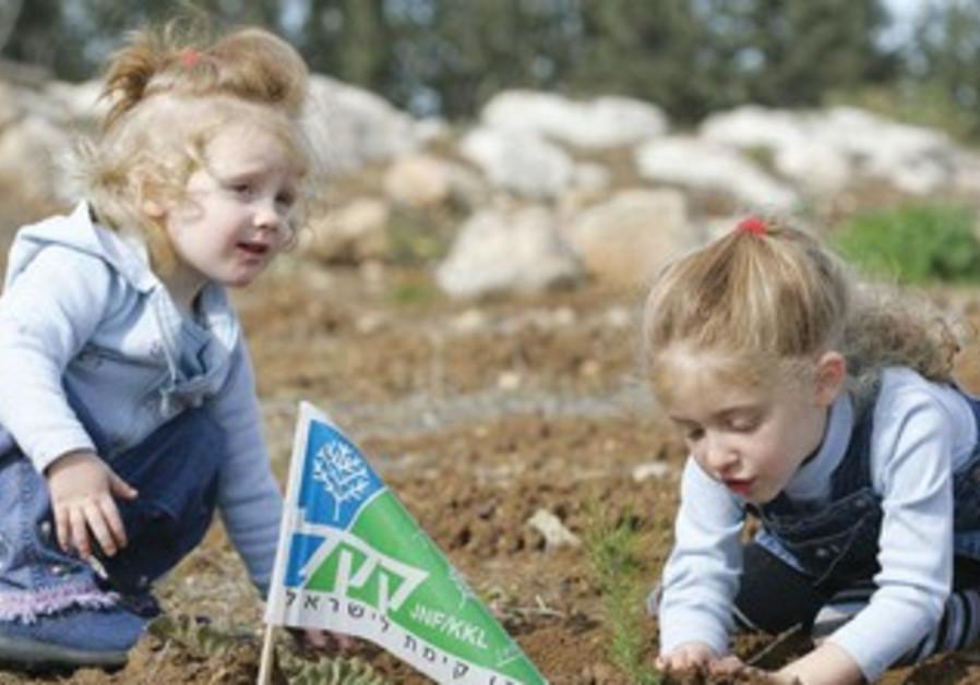 KKL tree planting