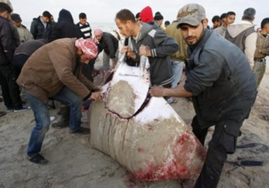Palestinians slice a Devil Ray at a beach in Gaza City, February 28, 2013