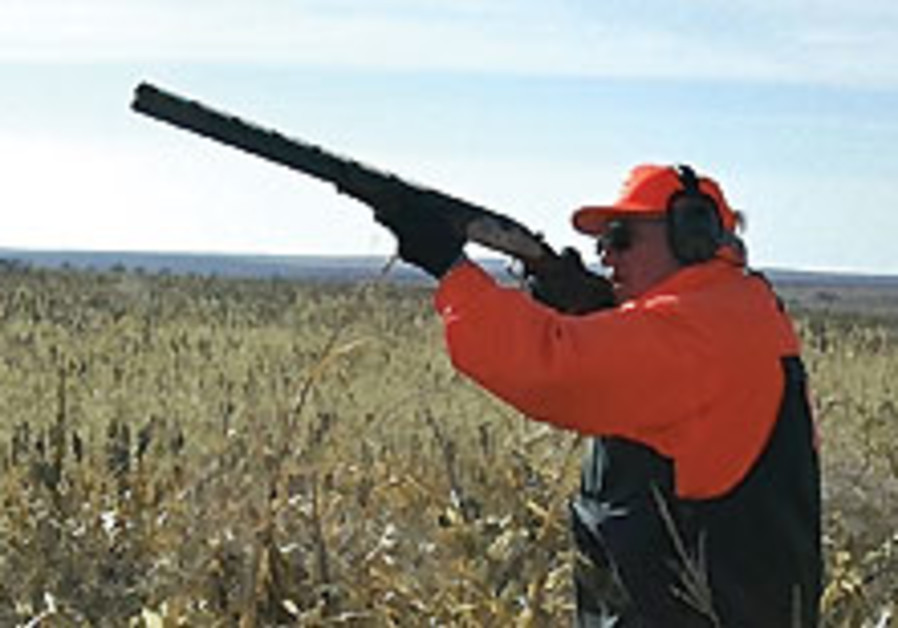 Wild animals can relax as hunting may soon be prohibited