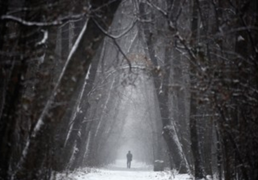 A man walks through a forest in western Ukraine.