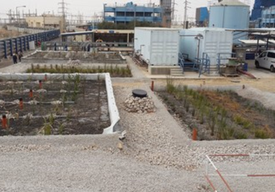 Biological waste treatment plant in Ramat Hovav