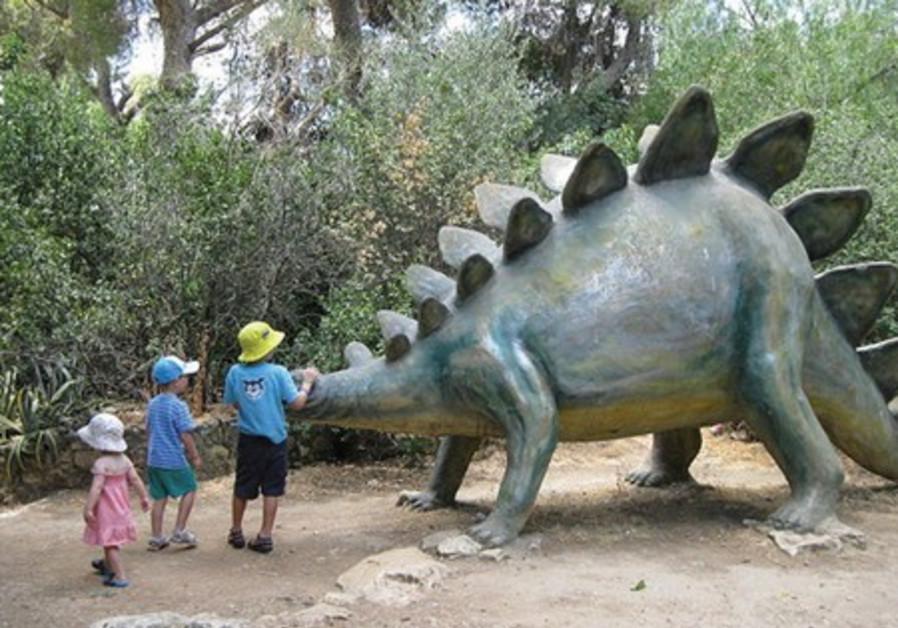 nature museum israel