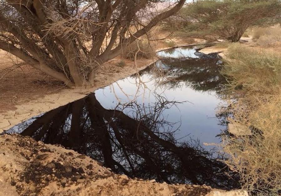 Oil spill near Eilat