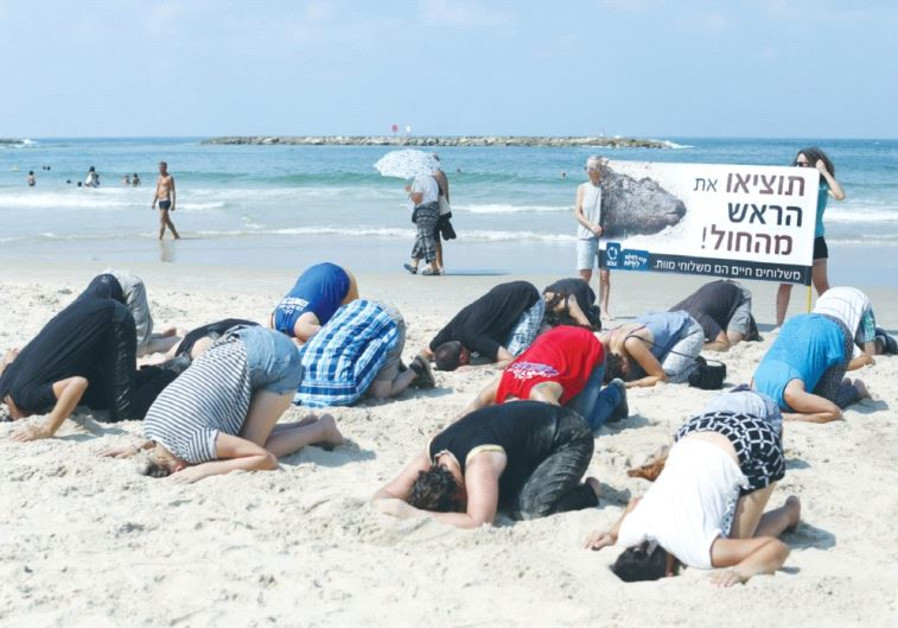 'STOP BURYING your heads in the sand!' the sign reads at Friday's protest on the Tel Aviv shore.