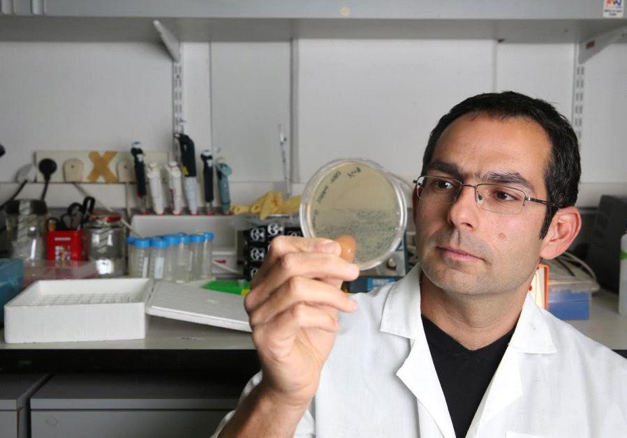 Dr. Zvi Hayouka.